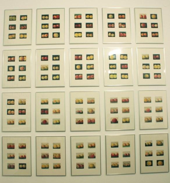 documenta 13 desenhos
